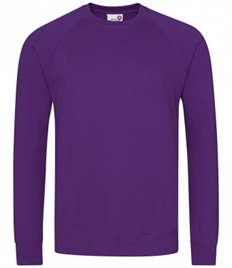 Pensford Primary Sweatshirt with School Logo